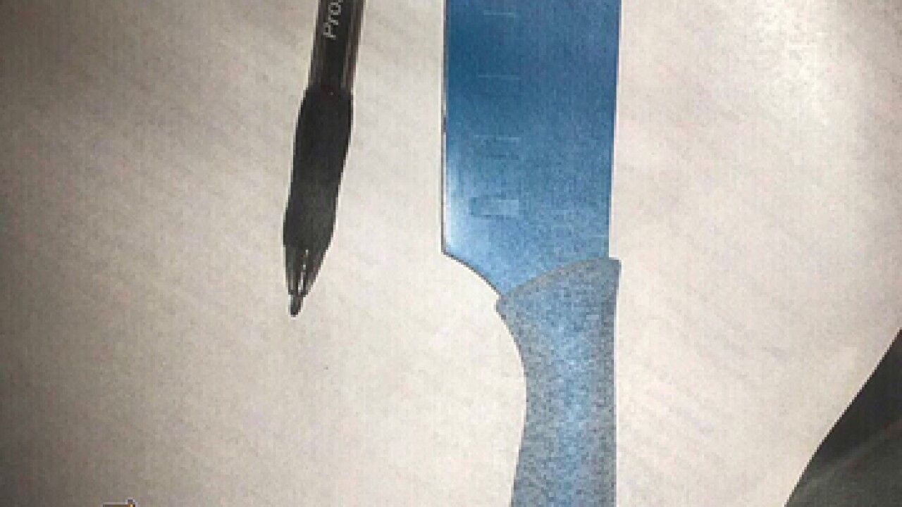 2 girls arrested with knives at school