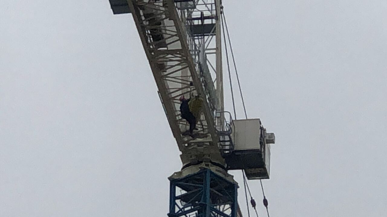 Rescue_from_crane.jpg
