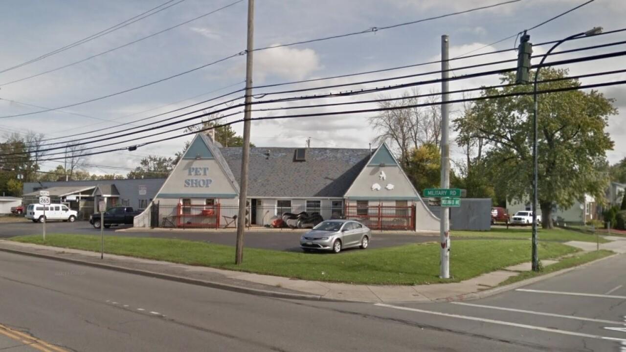 Niagara Aquarium Pet Store Set To Close At The End Of September