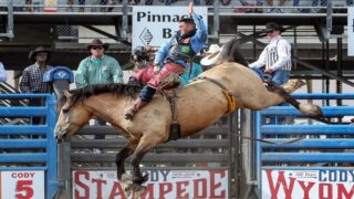 Days of '47 Rodeo crowns champions; Caleb Bennett wins $50,000, shares gold