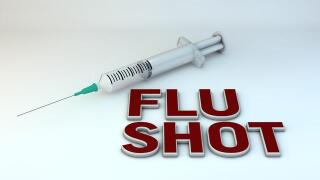Flu shots offered by health district