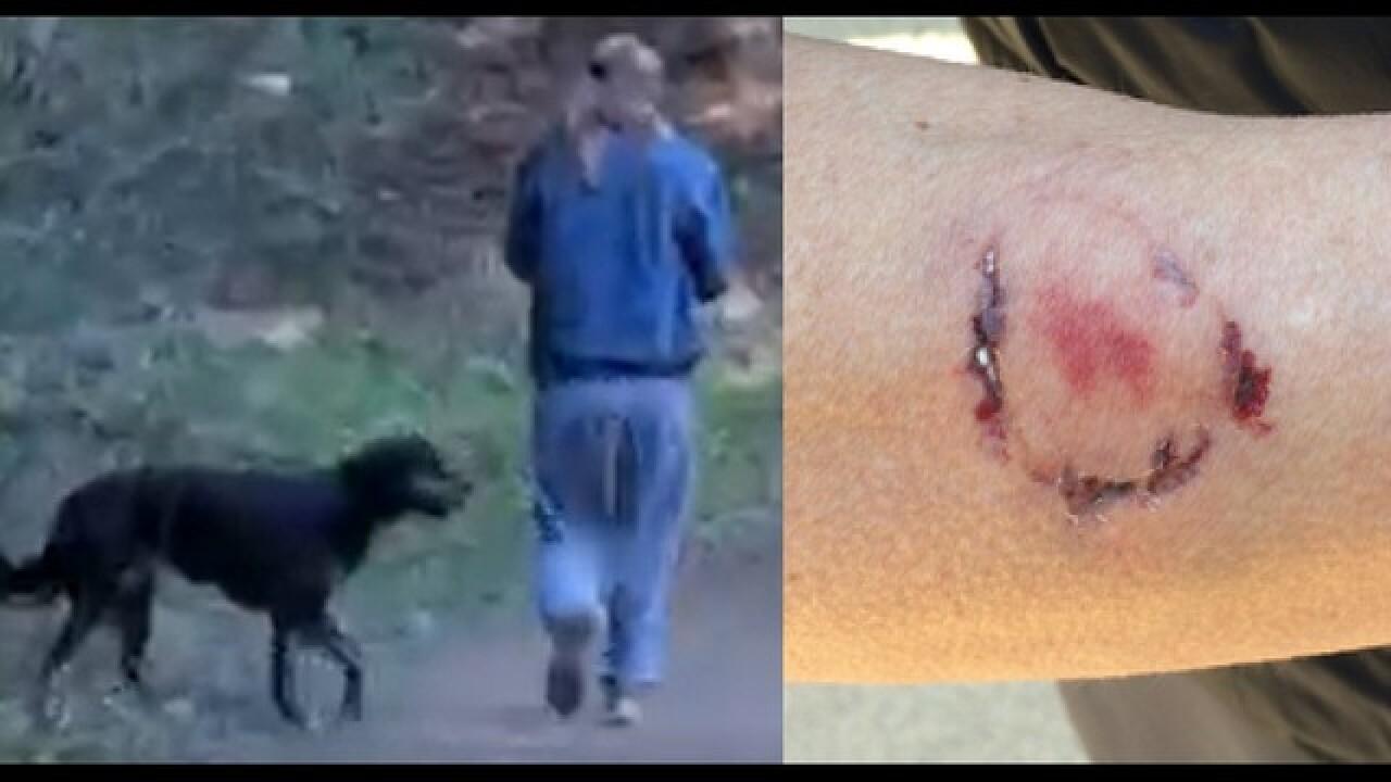 woman bites jogger.jpg