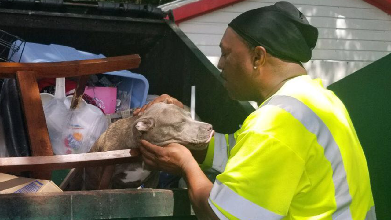 Puppy abandoned in dumpster rescued by Waste Management employees