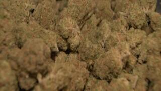 More Americans support legalizing marijuana