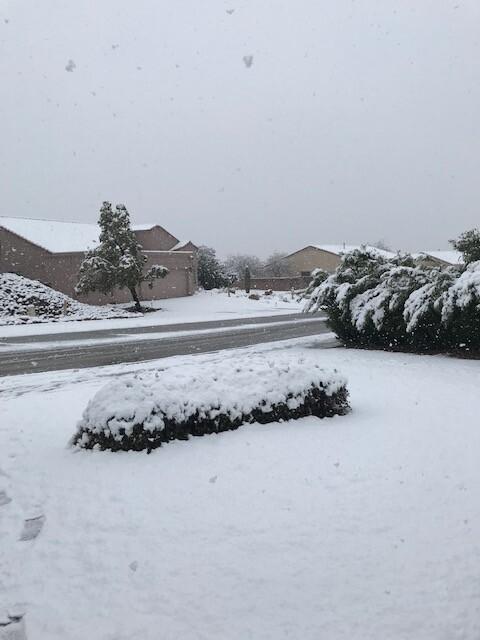 cheryl-gottshall-tucson-snow.jpg