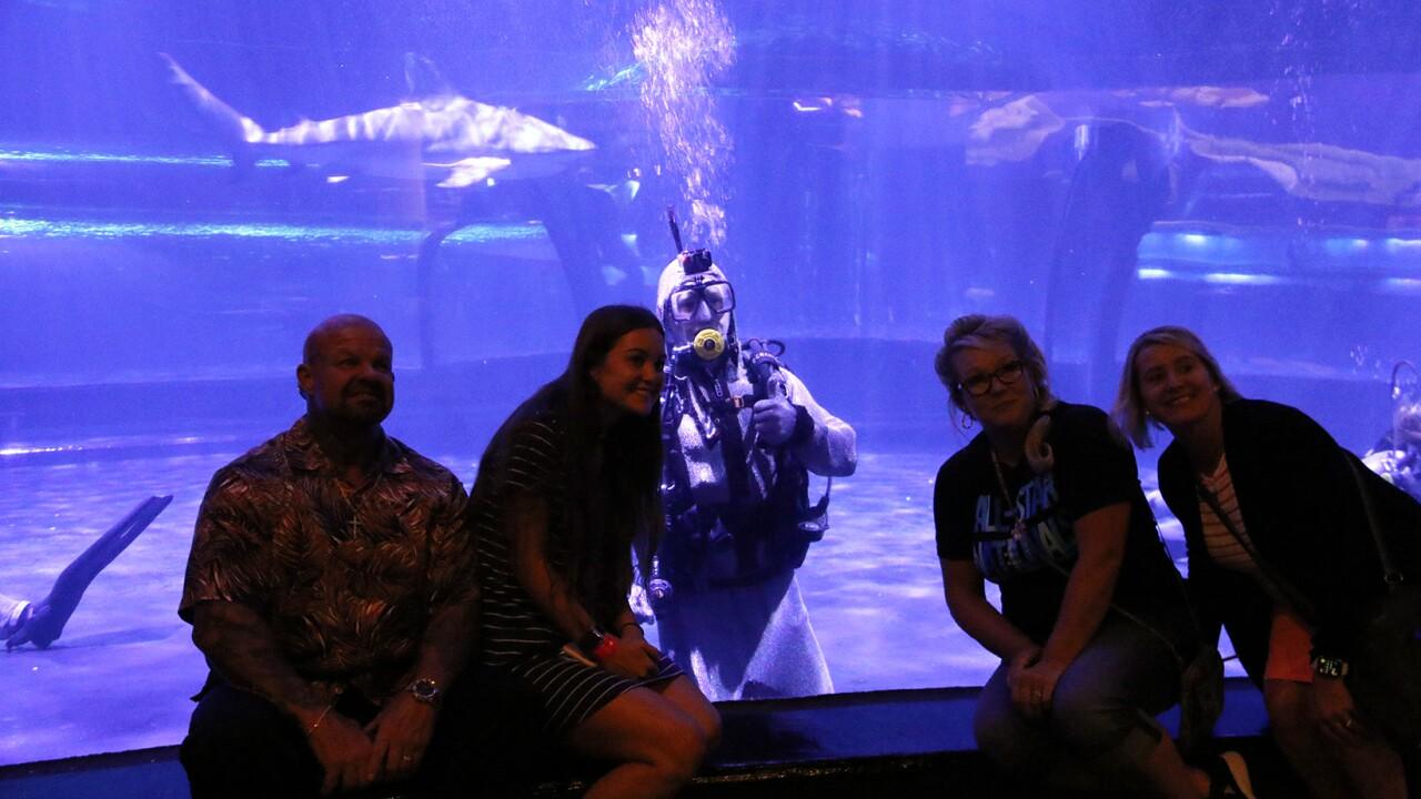 2020 Dive Winner Trae Taylor diving at the Oklahoma Aquarium