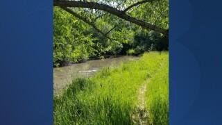 Little Bear River.jpg