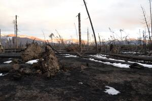 East Troublesome Fire_Nov 5 2020
