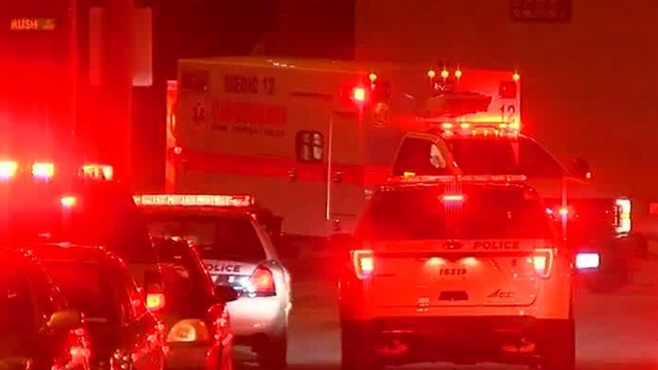 Police: Man shot in Fairview home