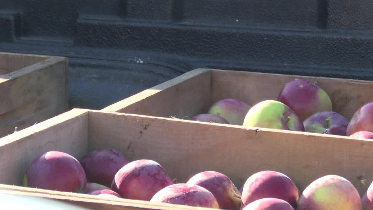 Montana AG Network: Orchard brings fresh fruit to schools