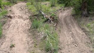 Unauthorized trails