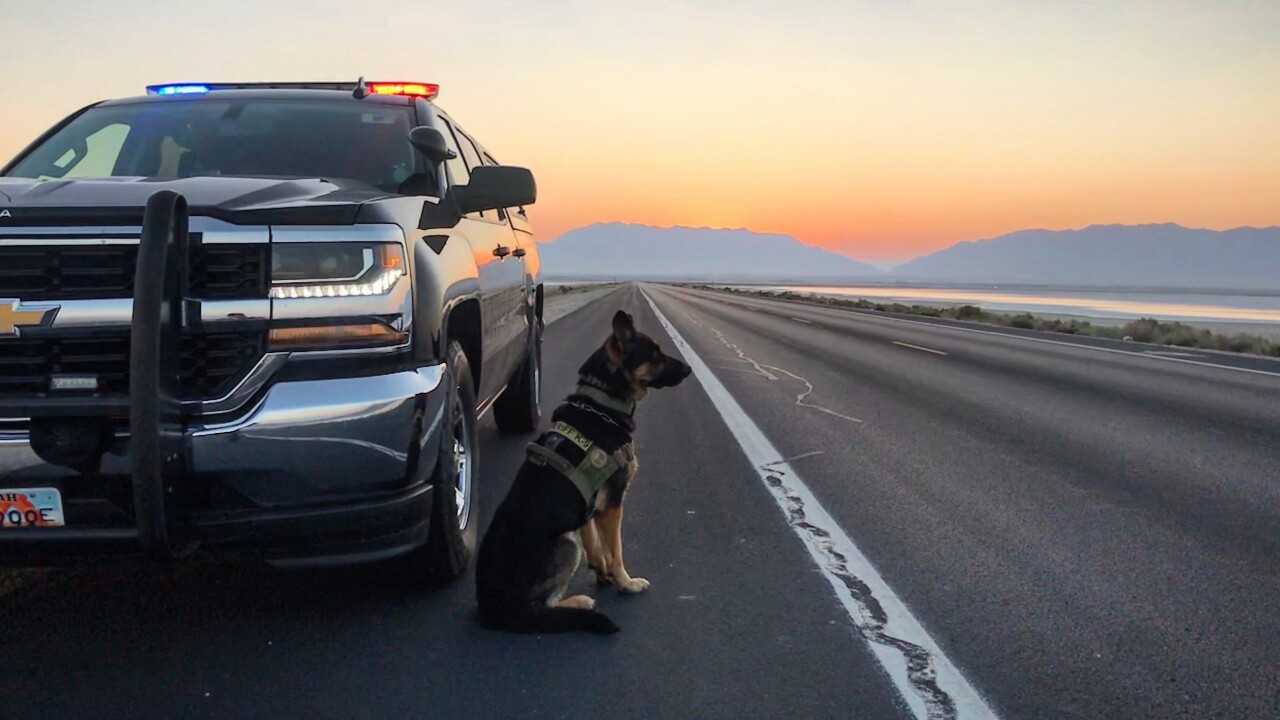 K9 Officer Rony standing next to a police cruiser. Courtesy of the Davis County Sheriff's Office.