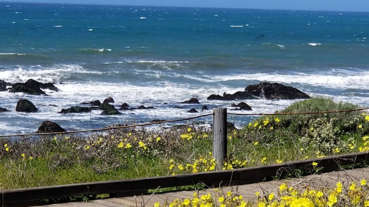 Breezy coastline in SLO county