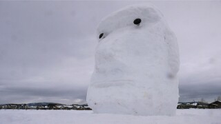 Bozeman dad, young neighbor return to build giant snow head in Oak Springs Park