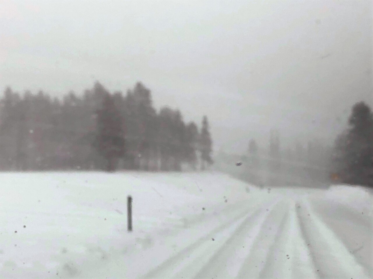 Bear Lake Road-Courtesy Rocky Mountain National Park.jpg