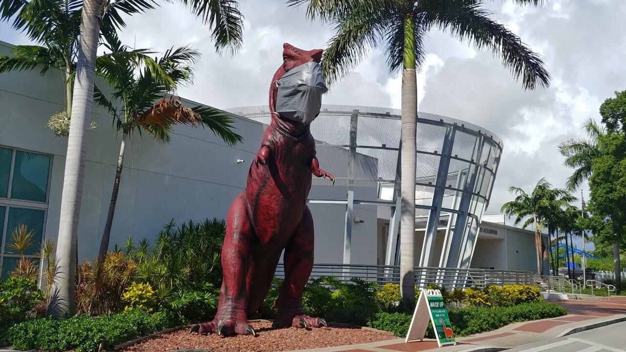 wptv-south-florida-science-center-dino-2.jpg