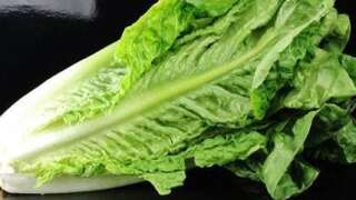 CDC: It's Safe To Eat Romaine Lettuce