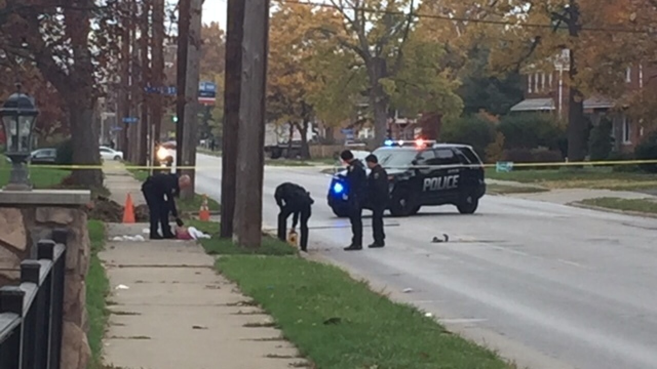 Girl dies from Euclid hit-skip crash injuries