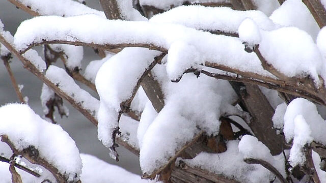 City of Clintonville declares snow emergency