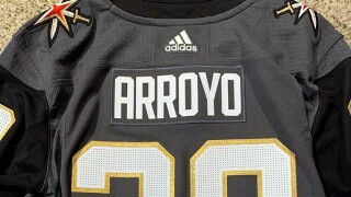 Arroyo VGK jersey sized.jpg
