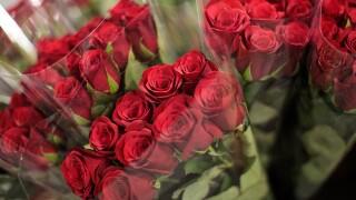 Valentine's Day: Managing the pressure