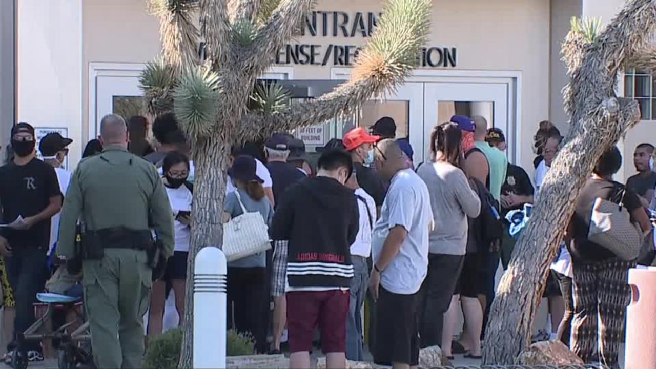 Flamingo DMV opening