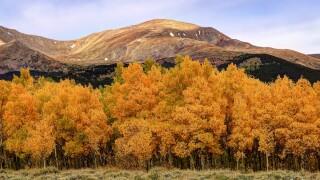 Mount Elbert_Jennifer Brown-Rogowski