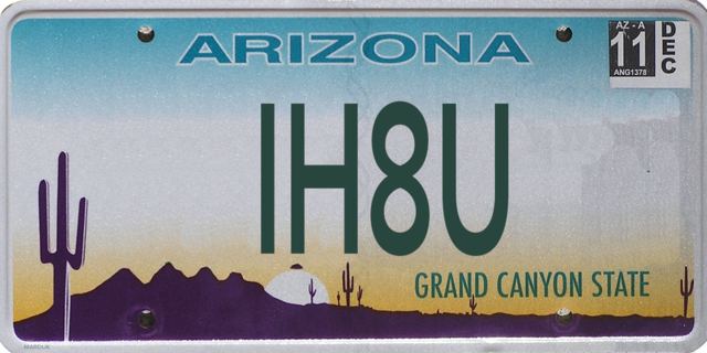 Banned Arizona license plates: 100 rejected plates