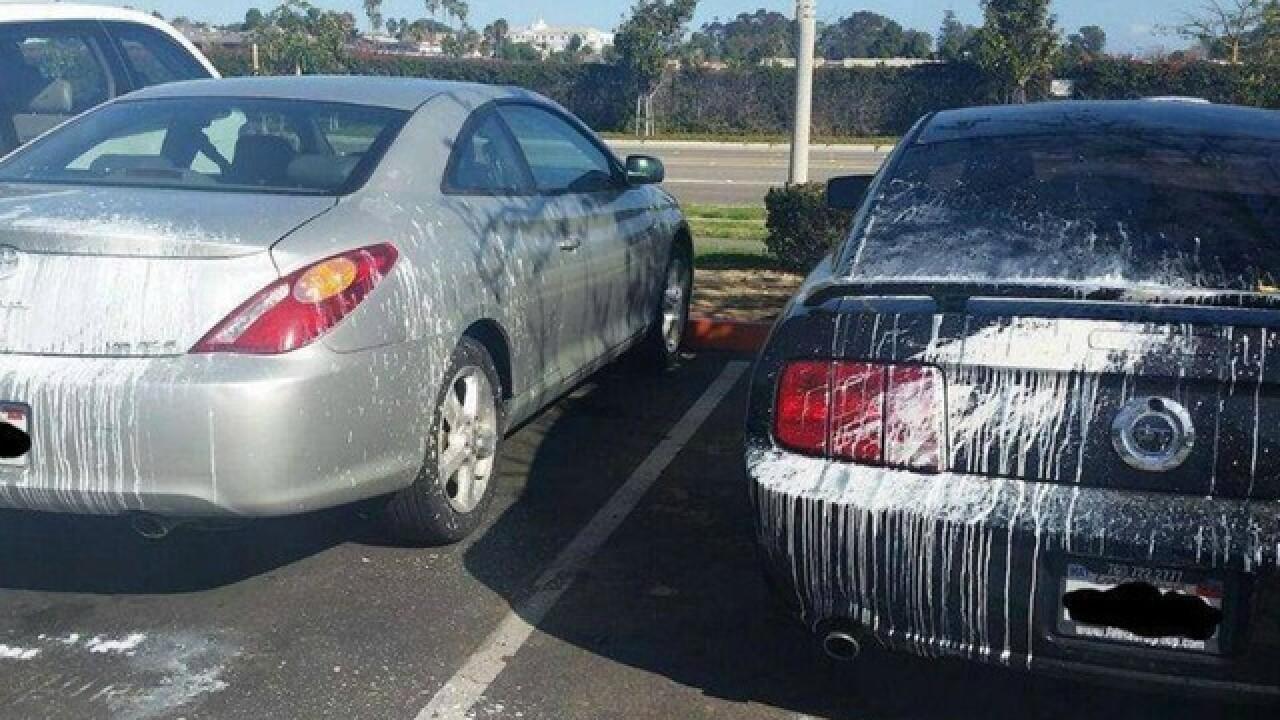 Vandal throws paint on cars in Oceanside