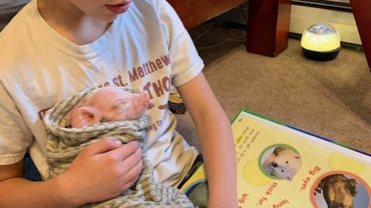 "Helena 1st grader gets creative reading to ""pets"""