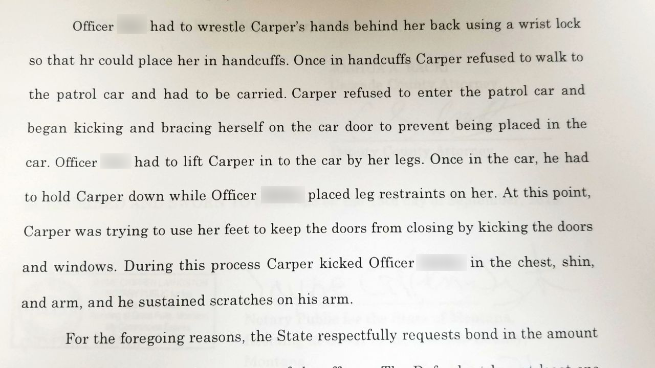 Carper charged with assaulting an officer and endangering the welfare of a child