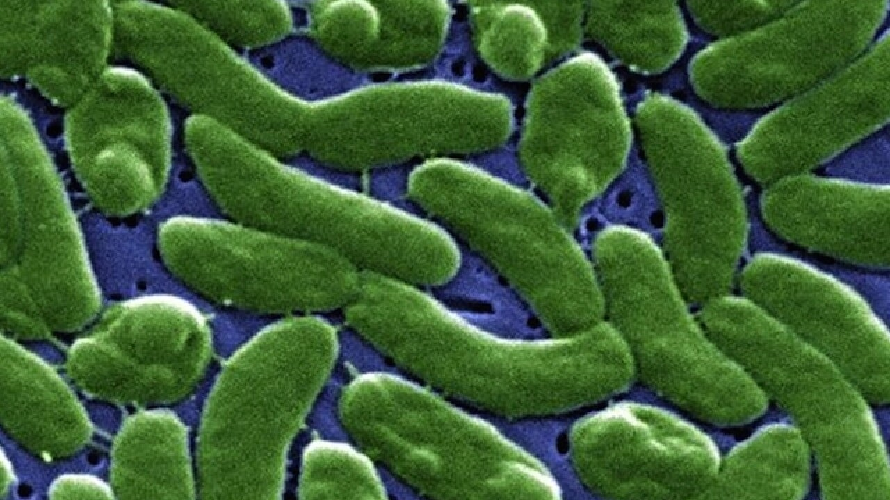 Nearly 30 in Texas have flesh-eating bacteria