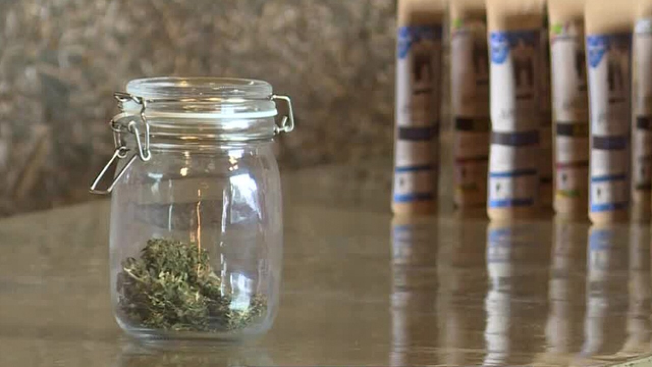 The Southern Hemp Expo Makes Debut This Weekend In Nashville