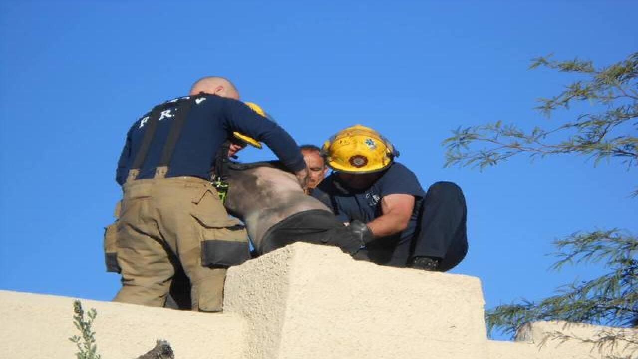 Man stuck in chimney for four hours rescued by fire department