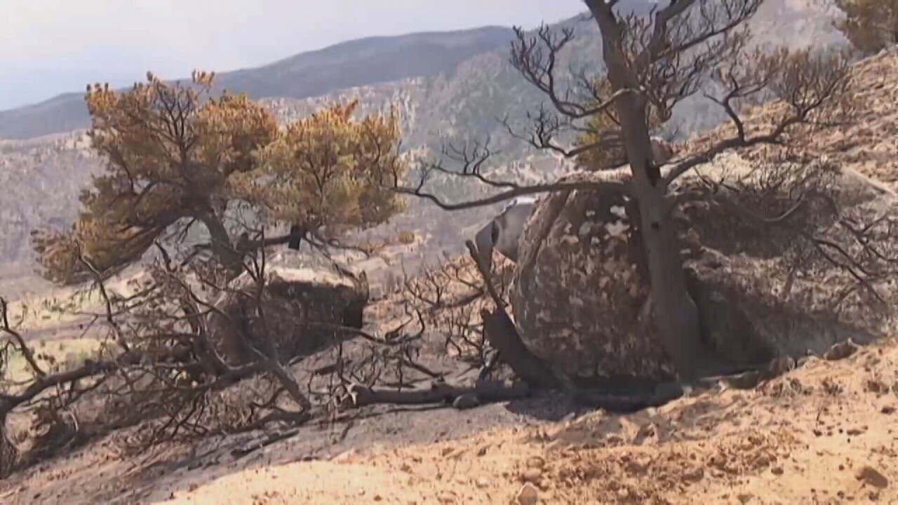 Carbon County fire.jpg