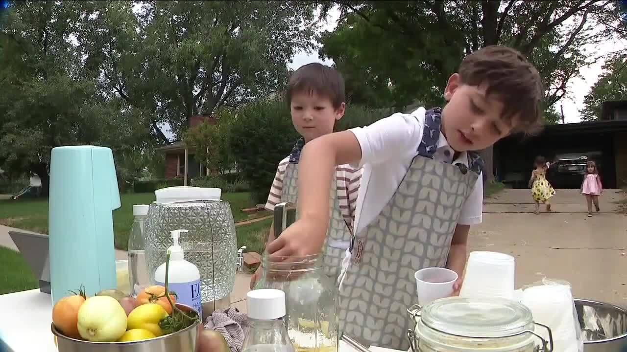Timber Tillemanndick and Rahm Tillemann-trivedi_lemonade stand
