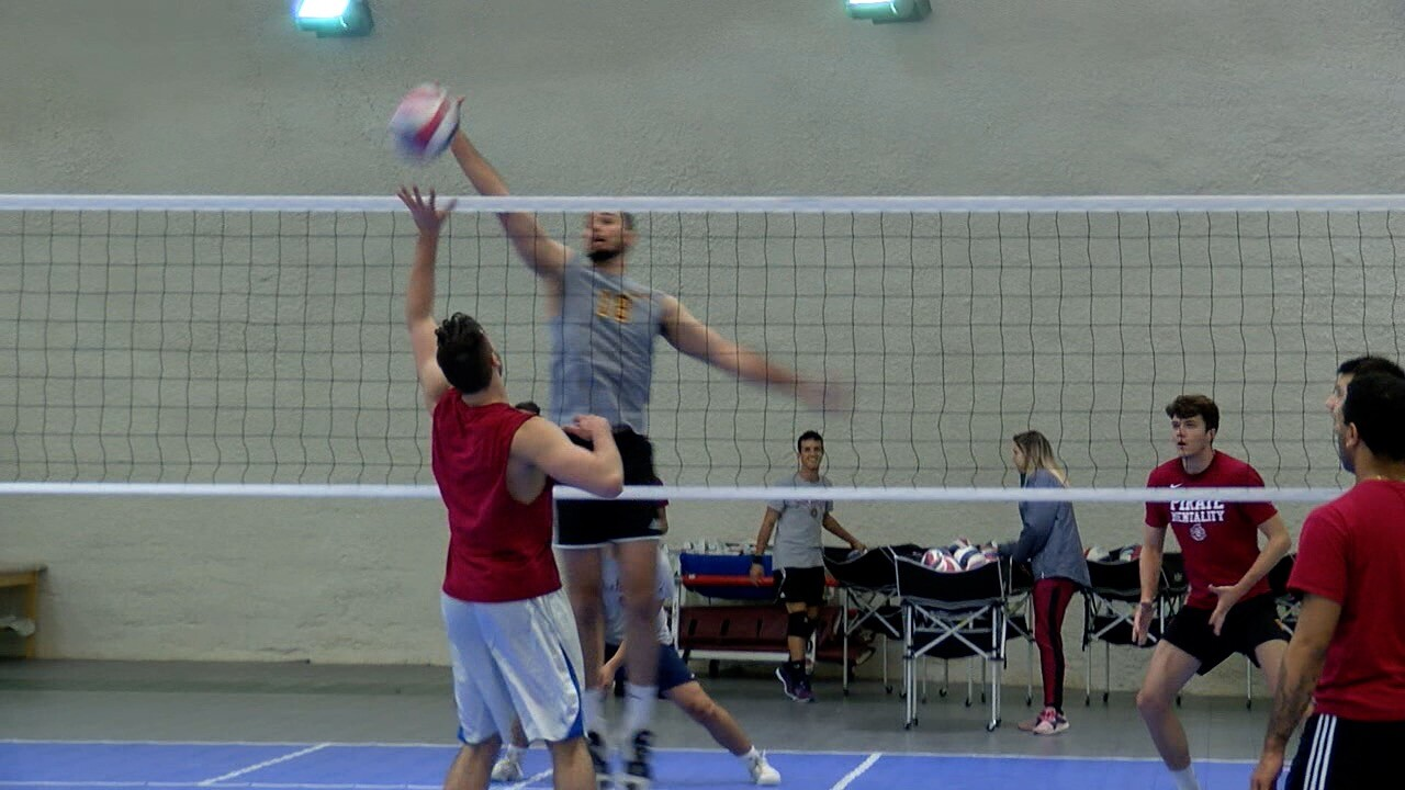 Park Men's Volleyball 2