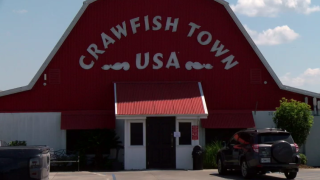 WYS Crawfish Town Cecilia.PNG