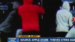 Theft ring targets Apple Stores