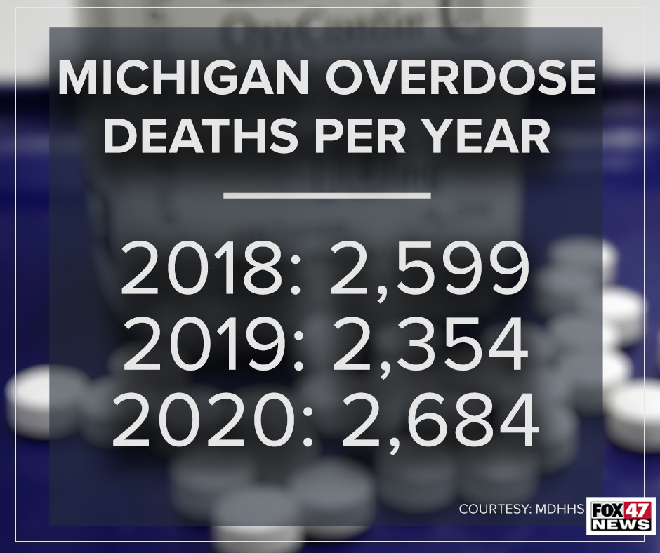 Michigan Overdose Deaths Per Year
