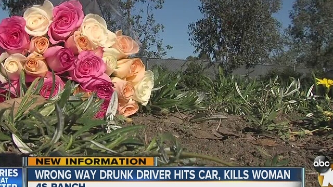 Woman dead after fatal DUI on Camino Del Norte
