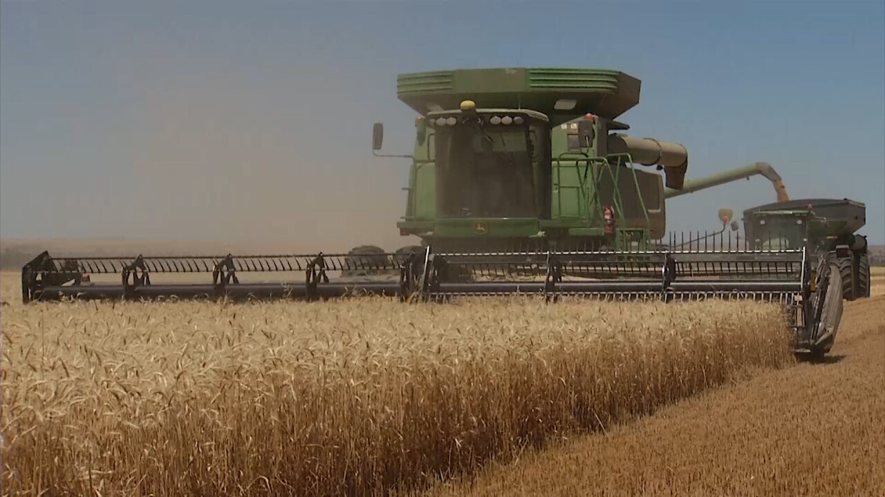 Wheat Harvest at Kehler Farm.jpg