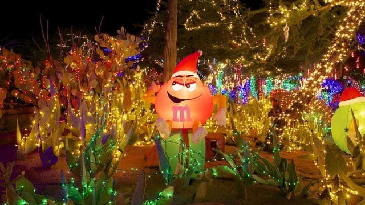 Ethel M Cactus Garden Christmas 2019 Ethel M kicks off holidays with lighting of cactus garden