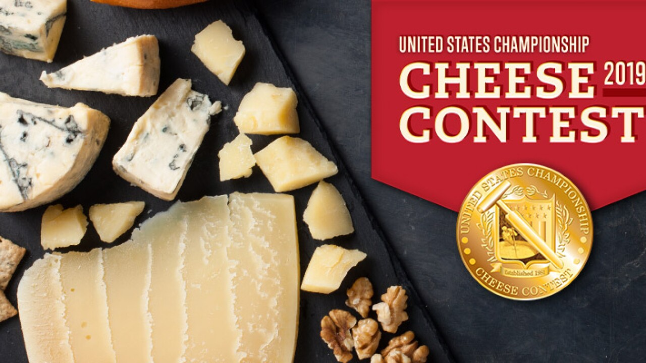 New Cheese Champion