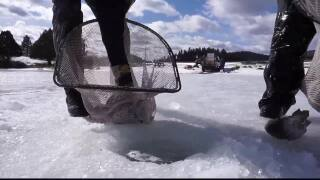 Montana FWP restocking lakes for anglers to enjoy