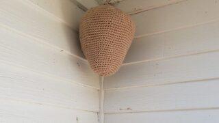 Woman's Crochet 'nest' Has Kept Hornets Away For Years