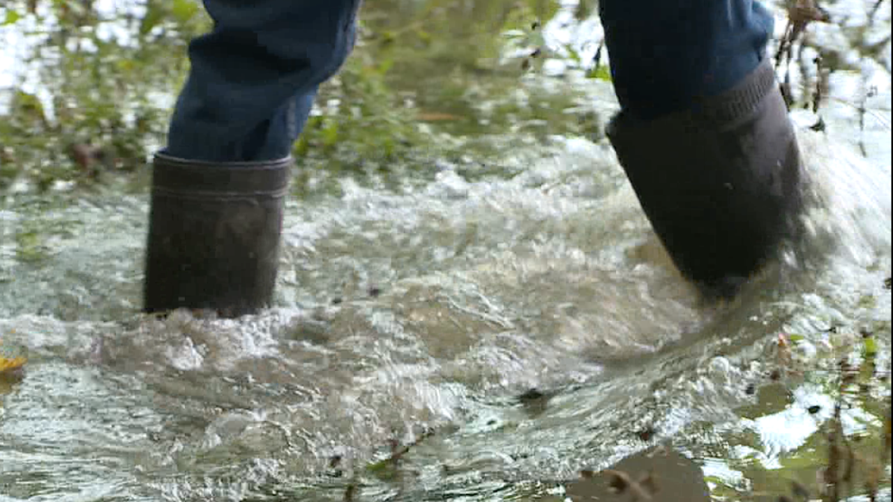 Growing N.E. Ohio rainwater runoff cause chronic flooding and erosion issues