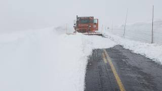 summer-snow-trail-ridge-road.png