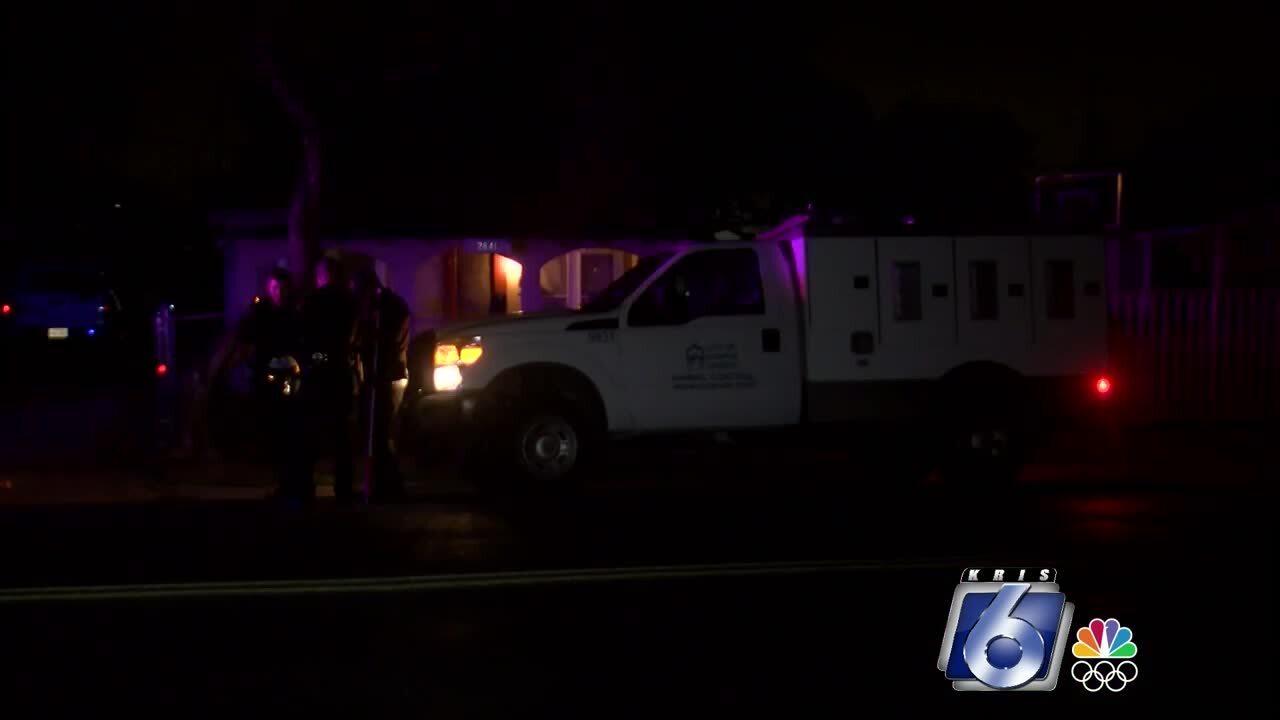 Dog attack puts Westside man in hospital