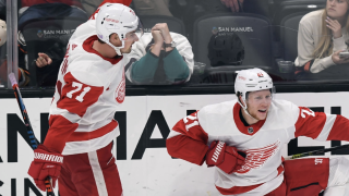 Red Wings fight back to beat Ducks in OT